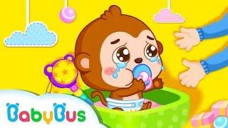 Download Baby Panda Care & More | Kids Songs collection | Nursery Rhymes | baby panda | Baby Panda Video
