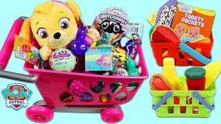 Download PAW PATROL Pup Baby Skye Goes Shopping for Groceries! Video