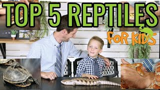 Download Top 5 Reptiles For Kids Video