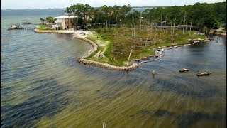 Download 'Living shorelines' use oyster shells and marsh grass to reverse coastal erosion Video