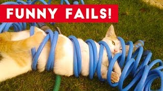Download Funniest Animal Fails July 2017 Compilation | Funny Pet Videos Video