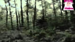Download Camara Encontrada en 1977 Captado Extraño Ser Video