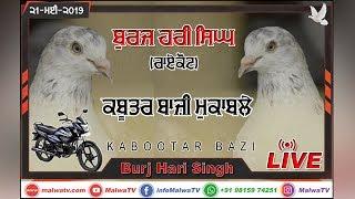 Download LIVE 🔴 BURJ HARI SINGH (Raikot) ਕਬੂਤਰ ਬਾਜੀ KABOOTAR BAZI [21-May-2019] 🔴 Help: +91 94652 83256(1A) Video