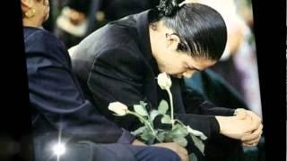 Download Selena Quintanilla - (Yo te Extrañare) 22 años sin nuestra Reina TexMex! Video