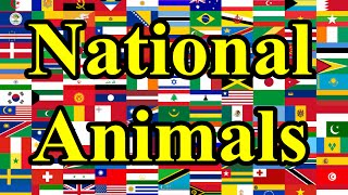 Download National Animals of Countries Video