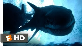 Download The Shallows (10/10) Movie CLIP - Impaled (2016) HD Video