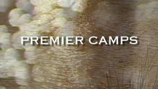Download Botswana Safari Videos - Premier Safari Camps in Botswana - Safaris101 Video