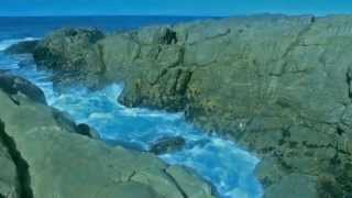 Download The Beauty Of Plettenberg Bay - South Africa Video