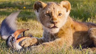 Download THE LION KING - 6 Minutes Clips + Trailers (2019) Video