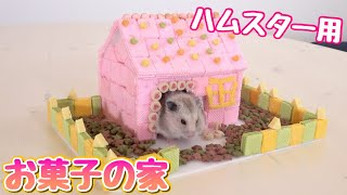 Download ハムスターが食べられる物だけでお菓子の家作ったら可愛かった!ぷんちゃんの誕生日! Video