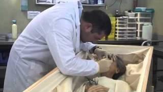 Download De profesión - Tanatopractor Video