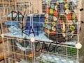 Download DIY C&C Rat Cage Video