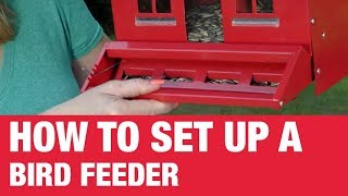 Download How To Set Up A Bird Feeder - Ace Hardware Video