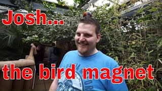 Download Taking The Dark Den to Dudley Zoo - Birds Poop Video