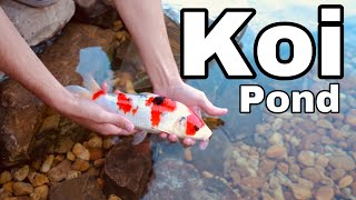 Download ADDING BABY KOI To The Pond!! ** EXPENSIVE** Video