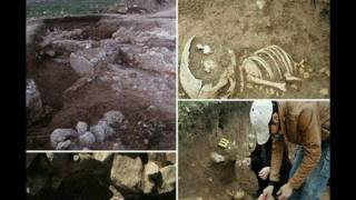 Download Remains of 'Giant' Discovered Near Ancient Treasure Trove In Iran Video