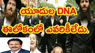 Download యూదుల DNA ఈలోకంలో ఎవరికీలేదు. there is no DNA like Jews in all over the world Video