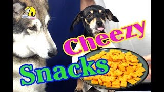 Download How to make Tasty Cheese Crackers at Home! These Home Made Cheese Cracksers are Delicious. Video