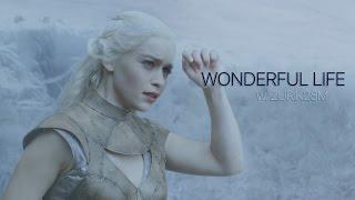 Download Multifandom || Wonderful Life [+Zurik23M] Video
