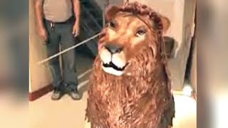 Download Da Vinci's Lion Robot Hides a Special Surprise Video