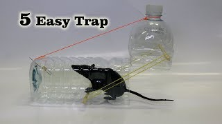 Download 5 Easy Mouse/Rat Trap Video