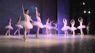 Download DANSUL FULGILOR - Spectacol de Craciun Video