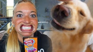 Download DOGS vs FUNNY MOUTH GAME (Super Cooper Sunday #128) Video