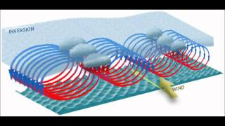 Download An Introduction to Chaos Theory with the Lorenz Attractor Video