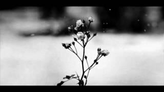 Download Chopin - Spring Waltz (Mariage d'Amour) [Please Read Description] Video