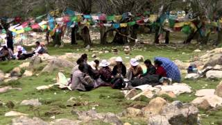 Download Mindfulness in Tibet (by Joost Pleune) Video