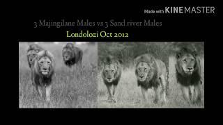 Download Throwback! 3 Majingilanes vs 3 Sand River/Hilda's Rock males (Oct 2012 Londolozi) Video