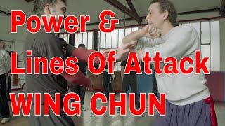 Download Wing Chun Puissance et lignes d'attaque Video