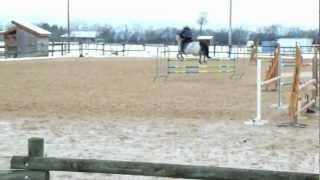 Download CSO Hôpital Le Grand (AS Poney 2D) - 10.02.13 - Vincent Martel & Quick'Nes Video