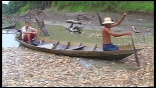 Download Global Biodiversity Outlook 3 Video