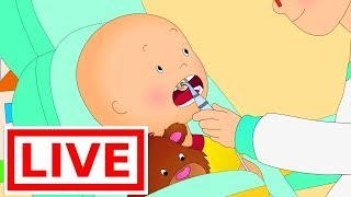 Download 🔴 LIVE Caillou At the Dentist | Live cartoon | Caillou live | Cartoons for children Video