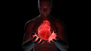 Download Cardiovascular System: Live Lecture The Heart Video