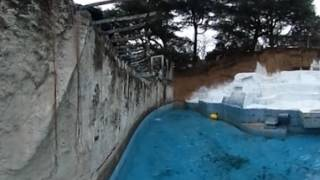 Download 【天王寺動物園】イッちゃんジャンプ360° Video