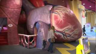 Download The Franklin Institute Video