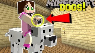 Download Minecraft: TOO MANY DOGS!! (39 EPIC TYPES OF DOGS!) Mod Showcase Video