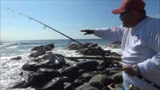 Download TECNICA DE PESCA SOBRE ROCAS Video