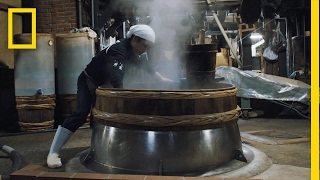Download A 750-Year-Old Secret: See How Soy Sauce Is Still Made Today | Short Film Showcase Video