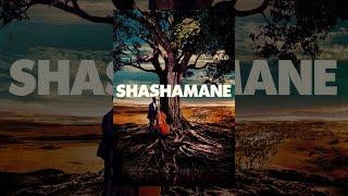 Download Shashamane Video
