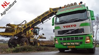 Download Loading Sugar Beets - Ropa Euro Maus 4 - Blankespoor - Trucks - Suikerbieten laden - Harskamp. Video