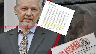 Download The Wikileaks Bombshell You Never Heard About Video
