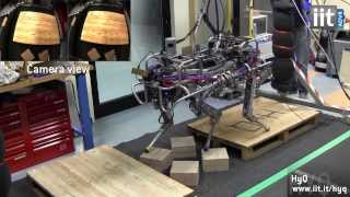 Download Probably The Most Versatile Quadruped Robot: HyQ Video