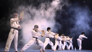 Download K Tigers Taekwondo Video