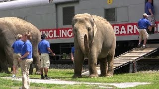 Download Ringling Brothers Circus Train and Animal Walk at Hershey Video