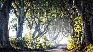 Download Ireland - The Road Not Taken Video
