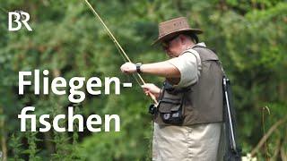 Download Fliegenfischen in der Fränkischen Schweiz | Zwischen Spessart und Karwendel | BR | Doku Video