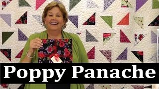 Download Same Fabric- FIVE Different Patterns with Jenny Doan from MSQC Video